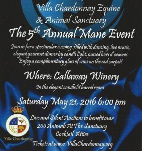 VillaChardonnay_The-Mane-Event