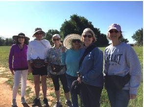 Conservation santa rosa Plateau