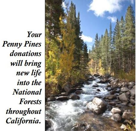 Conservation - Penny Pines